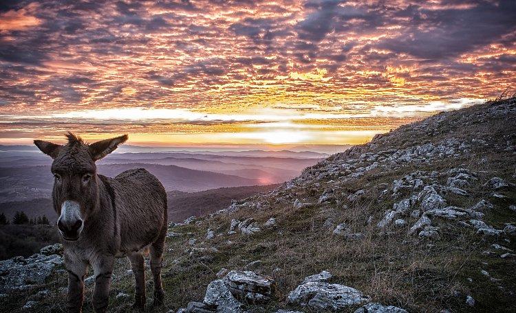 Il Monte Labro -