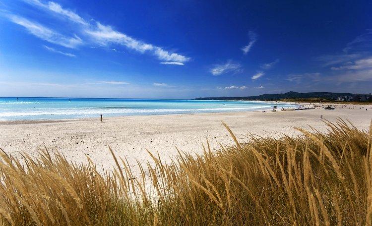 Spiaggia di Rosignano ☀️ -