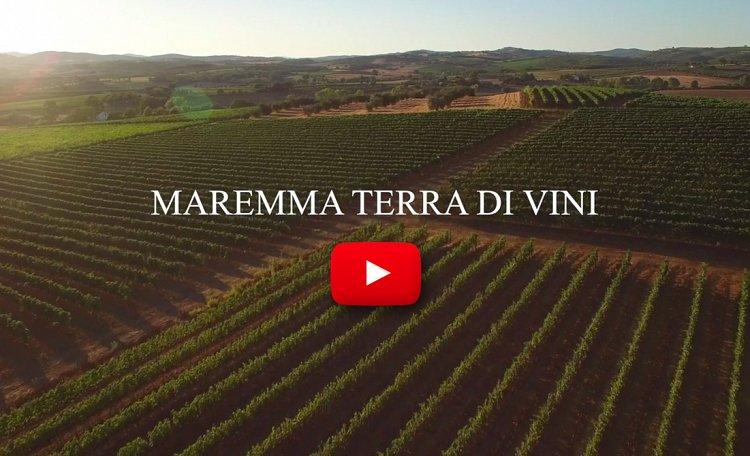MAREMMA ? LAND OF WINES - Wein ist der Ausdruck der Maremma und erzählt von einem Land mit sanften Hügeln und mediterranem Gestrüpp. Ein noch zu enthüllender Ort, an dem Wein den Schritt in die Zukunft markiert ...