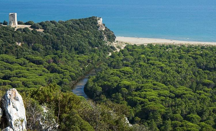 Maremma Park ☀️ - The Maremma Park: a green oasis of 9 thousand hectares
