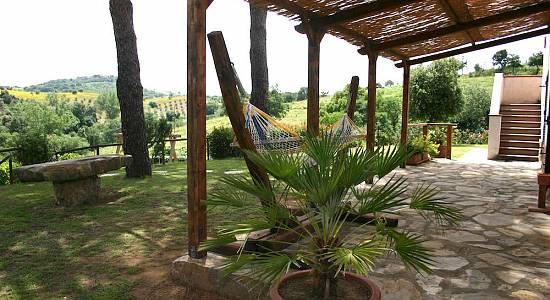 Farm Holiday Olivetino Magliano in toscana