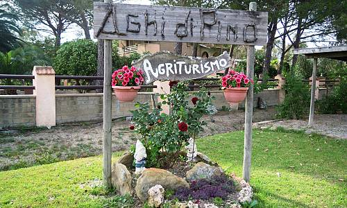 Agriturismo Aghi di Pino - Marina di Grosseto (Grosseto)