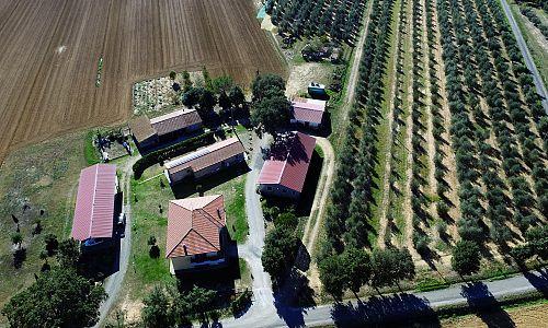 Agriturismo Le Sughere - Roccastrada (Grosseto)
